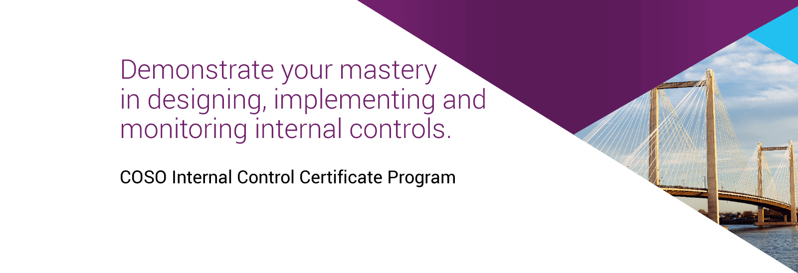 Coso Internal Control Certificate Program Aicpa Certificates