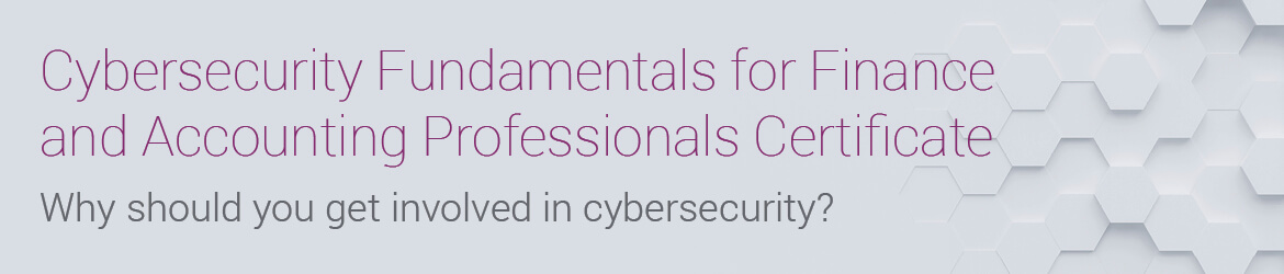 Cybersecurity Fundamentals for Finance and Accounting Professionals ...